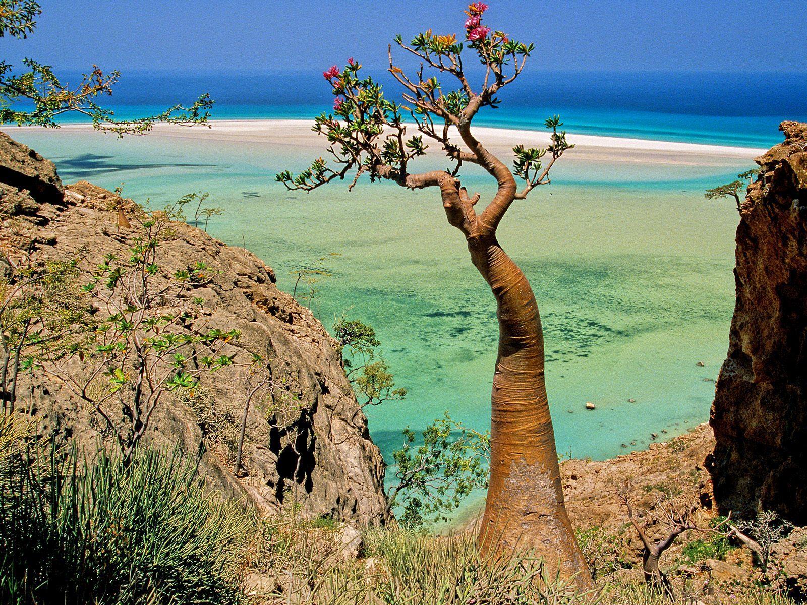 Socotra-Beaches